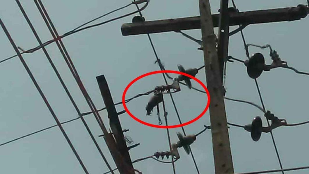 Ikeja Electric Staff Electrocuted,Loses Arm During Power Disconnection 1