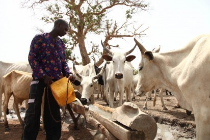 Herdsmen: kill One, Injure Another In Delta 1