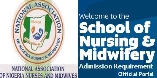 Lagos State School of Nursing Igando