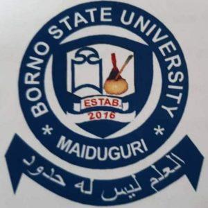 Borno State University