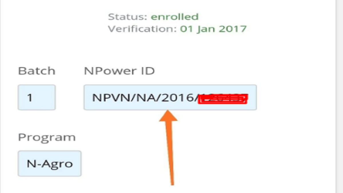 Applying for Npower Transitioning? Here is how to check for your Npower ID Number