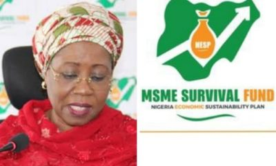 FG Updates MSME Survival Fund Registration Portal - Apply if you have not