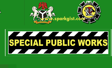 Special Public Works Programme Recruitment 2020 1