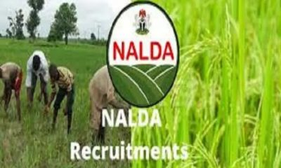 NALDA Recruitment 2021 Online Application Begins (How to Apply)