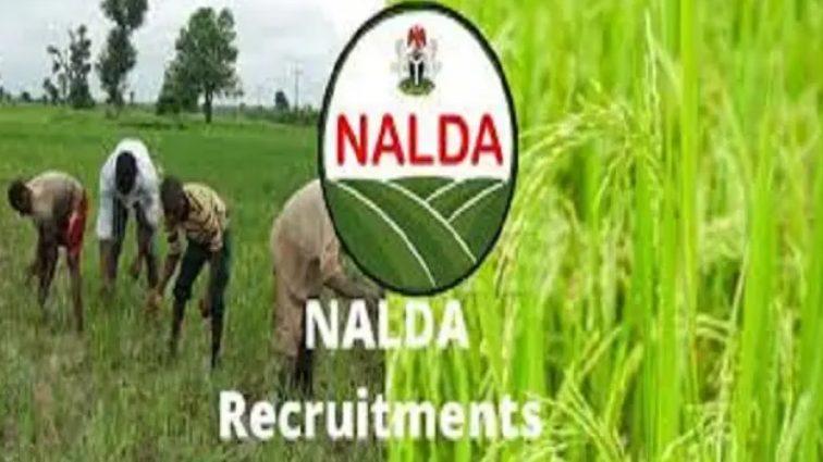 NALDA Recruitment 2021 Online Application Begins (How to Apply)