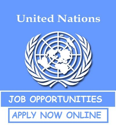 UN Jobs: Apply as Head of mission Nigeria M/F (More details)