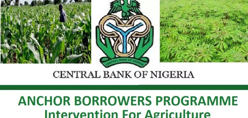 Apply for CBN Anchor Borrowers Programme (ABP) 2021